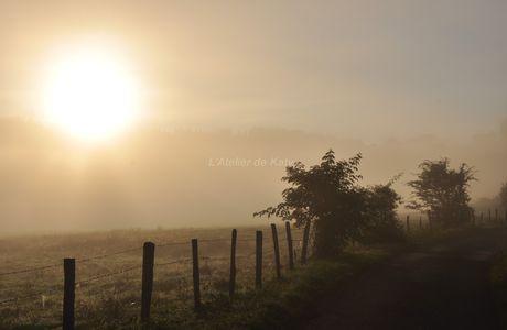 Quand le soleil joue avec le brouillard...