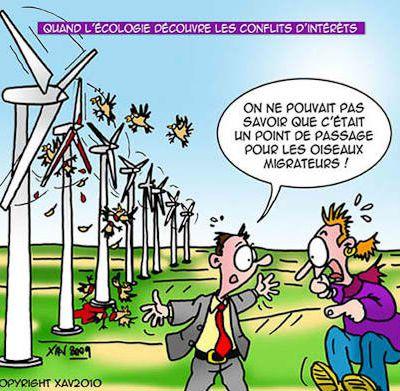 Autorisation de défrichement, projet éolien du col du Bonhomme: