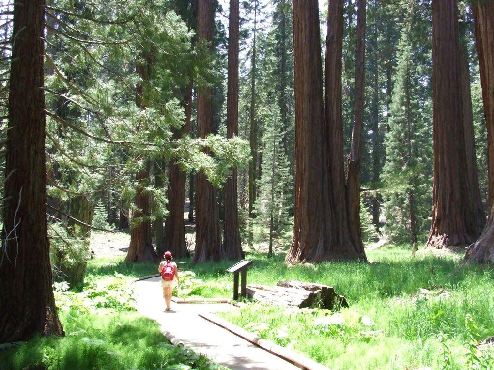 Album - Californie 2007