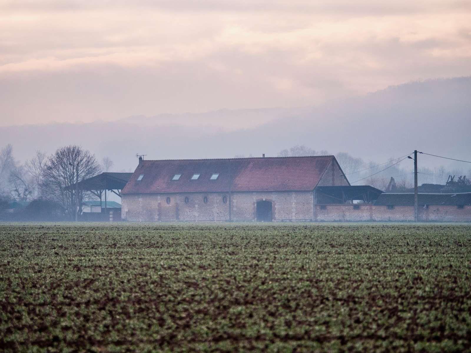 Couleurs d'hiver sur Pinterville par Frédéric Ménissier (janvier 2021).