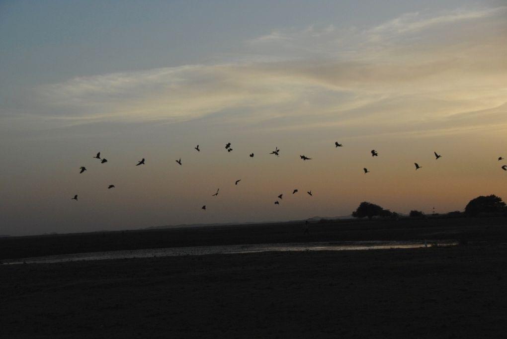 Les dunes et la mare d'Oursi