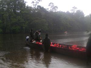 """pont suspendu à 36m du sol,tout est prêt pour grimper, le palmier """"désespoir du singe, départ sous la pluie on aperçoit au loin le canoé en détresse."""