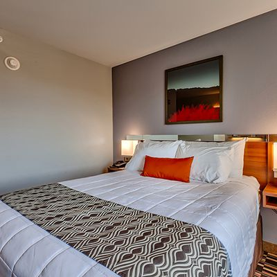 Book Your Lavish Hotel Online At Affordable Rate