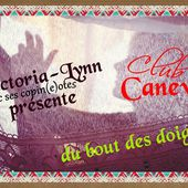 club canevas - crea.vlgomez.photographe et bricoleuse touche à tout.over-blog.com