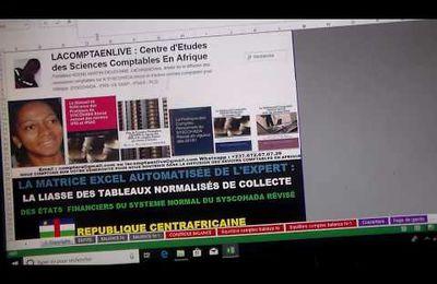 RÉPUBLIQUE CENTRAFRICAINE : RECEVEZ LA MATRICE EXCEL AUTOMATISÉE DE L'EXPERT DE LA LIASSE DE COLLECTE DES ETATS FINANCIERS ANNEXÉE DE L'ETAT SUPPLÉMENTAIRE