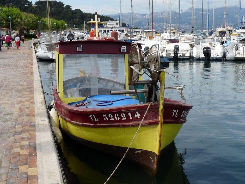 CO  DETTE  TL326214 , dans le port de Saint Mandrier