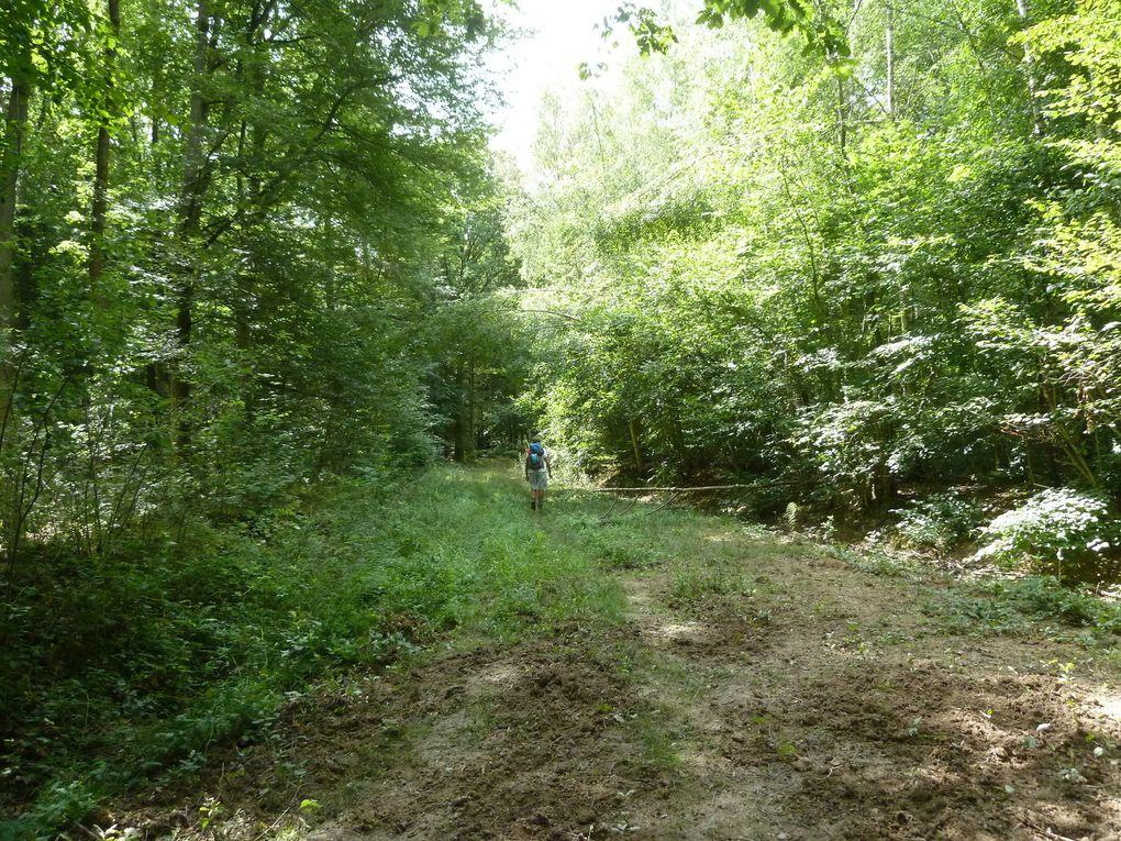 Randonnée en boucle de Roissy-en-Brie, 21,22 km.