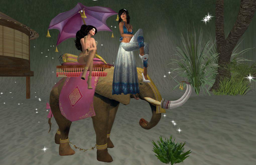prseques toutes mes photos sur sl du mois de janvier 2010