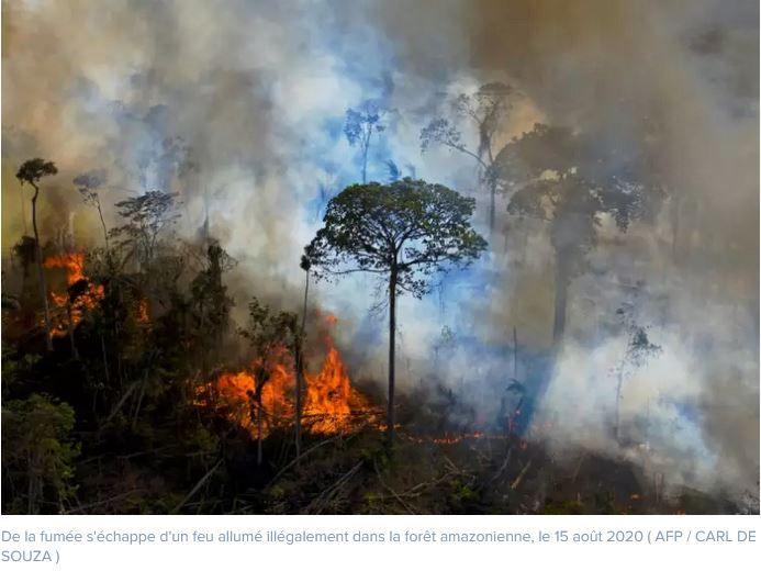 incendies-Amazonie