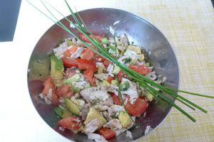 Salade estivale thon frais, tomates, avocat etc..