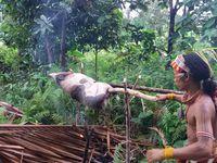 """Les Mentawai - Chamanisme et danses chez les """"Hommes Fleurs"""""""