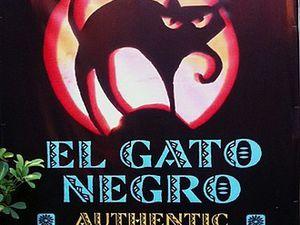 L'image du chat noir : un choix militant et révolutionnaire