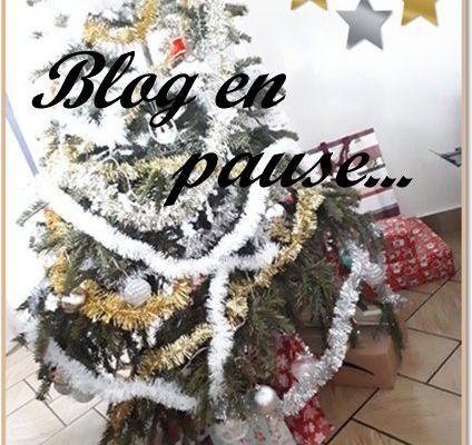 Blog en pause pour les fêtes....