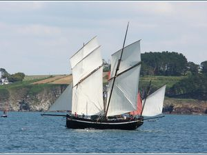 "Lougre ""GRAYHOUND"" de Fowey UK (copie 2012)"