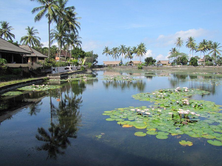 Album - 50 Bali cote sud est