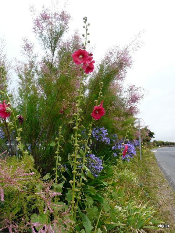 promenade a travers la Bretagne