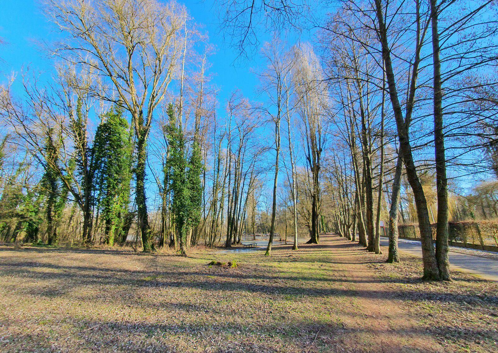 Le Marais de Biache-St-Vaast