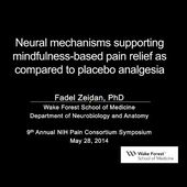 Fadel Zeidan: Neural Mechanisms Supporting Mindfulness-Based Pain Relief as Compared to Placebo