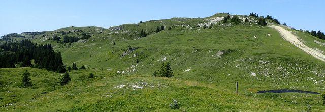 Crêt de la neige : Depuis le Cozet (sommet téléphérique)