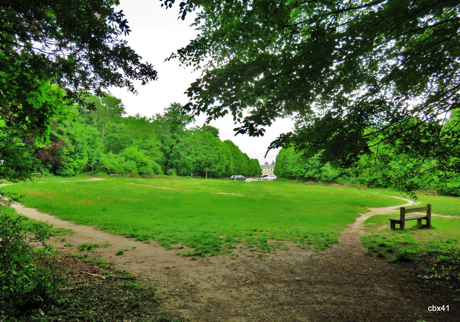 Sentier botanique du Val, Forêt domaniale de Saint-Germain