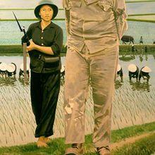 La bataille du riz, de Gilles Aillaud