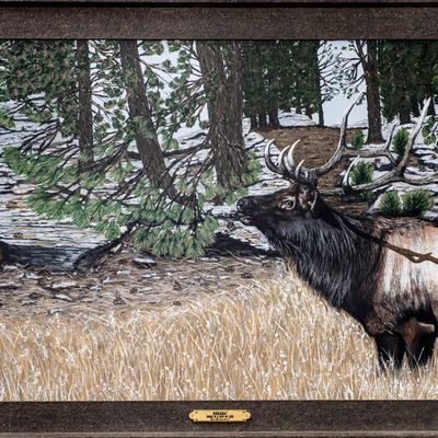 This Christmas gift your loved ones an eye-catching wildlife art work