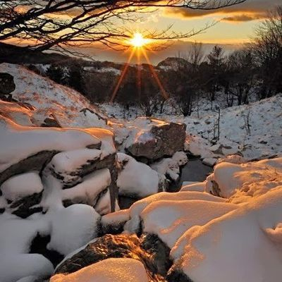 Paysage - Neige - Soleil - Picture - Free