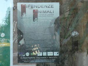 Dipendenze da animali e Cani da compagnia nella società moderna. A Palermo, nel contesto della Settimana delle Culture, si discute di questo tema