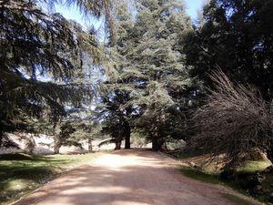 RN13 Midelt-Meknès (Maroc en camping-car)