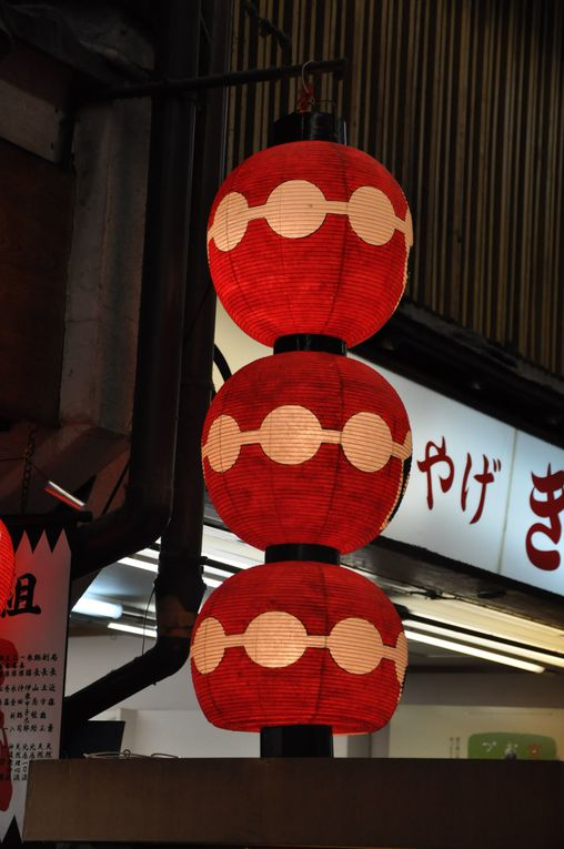 Album - 03-Fushimi-Inari