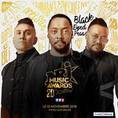 La liste des artistes présents aux NRJ Music Awards le 10 novembre (Mis à jour). - Leblogtvnews.com