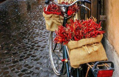 Ruelle - Bicyclette - Piments - Rouge - Picture - Free