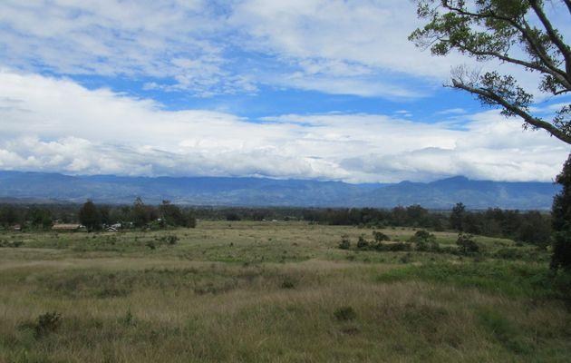 Papua...Wandern und Begegnungen mit den Dani (Einheimische)