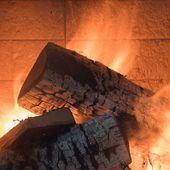 """Transition énergétique : le chauffage domestique au bois """" incontournable """" ?"""