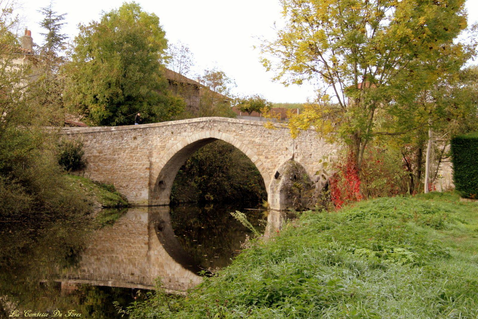 """Le pont Gavé, qu'on trouve aussi sous le nom de """"Pont Gavet"""", """"Gavey"""" ou """"Gaviel"""" aurait été construit au XIVème siècle. Il était déjà mentionné en 1381. Il conduit au Manoir de Teillères, construit au milieu du XIVè, par Guy VII, comte de Forez."""