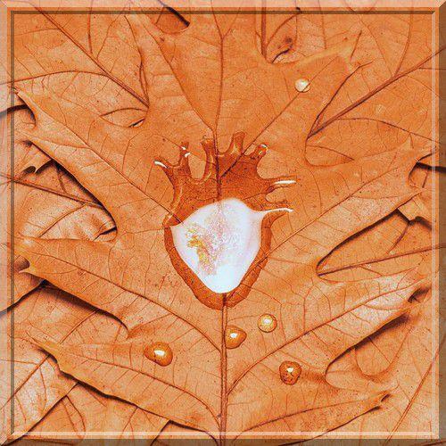 Accorder grand intérêt à la réforme des cœurs