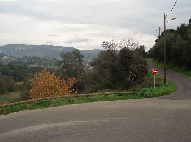 Nature-Corse