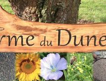 visite ferme du Duneleet