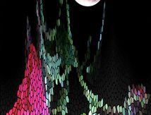 Eclipse lunaire _61