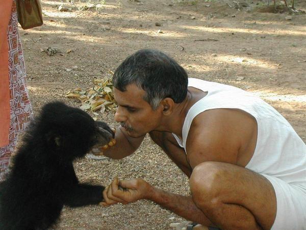 Cette année-là le Dr Prakash AMTE était là, avec sa femme Dr Mandakini. Soulager la souffrance humaine et animale, tel Albert Schweitzer