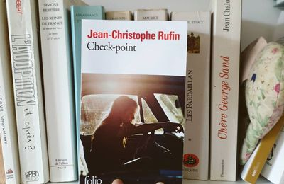 Check Point de Jean-Christophe Rufin
