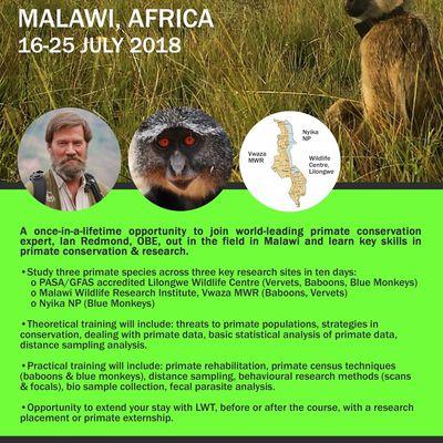 Cours sur la conservation des primates au Malawi avec Ian Redmond - juillet 2018