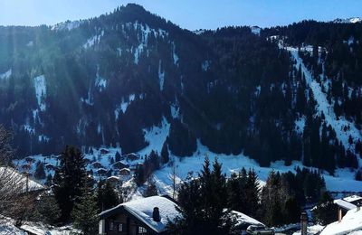 Tips for Finding the Best Available Property for Your Morgins Vacation