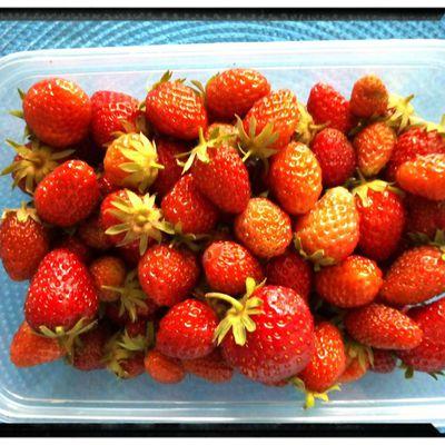 Une barquette de fraises et hop un clafoutis !