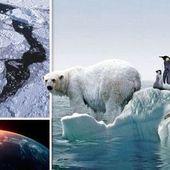 """"""" Il n'y a pas de fonte des pôles """", selon un expert sur les changements climatiques - MOINS de BIENS PLUS de LIENS"""