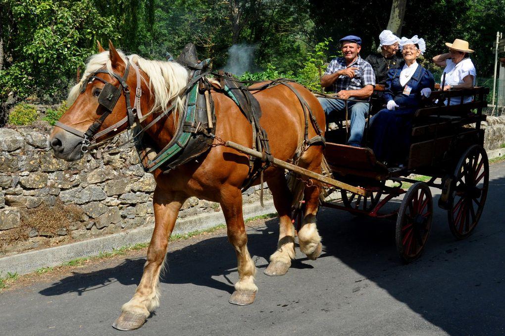 A cheval pour les patates ou pour la balade (4 photos)