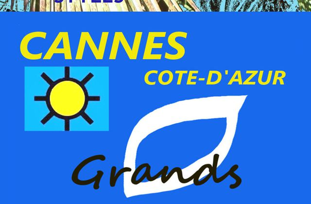 PARTICIPATION AUX GRANDS PINCEAUX DE FRANCE