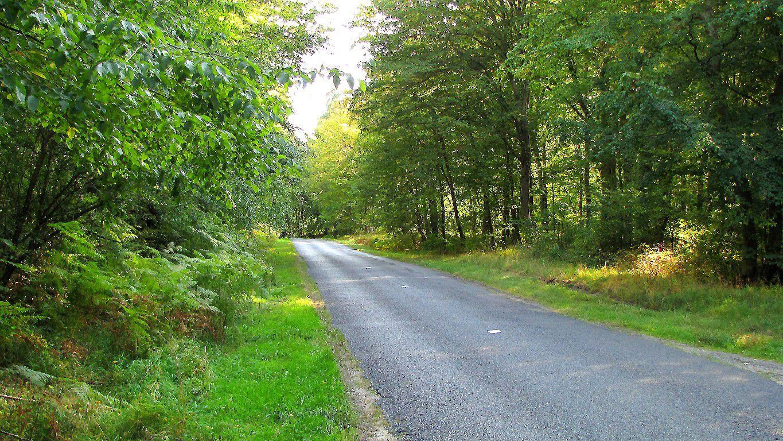 carrefour_Route d'Humières_Route du Volerbeau
