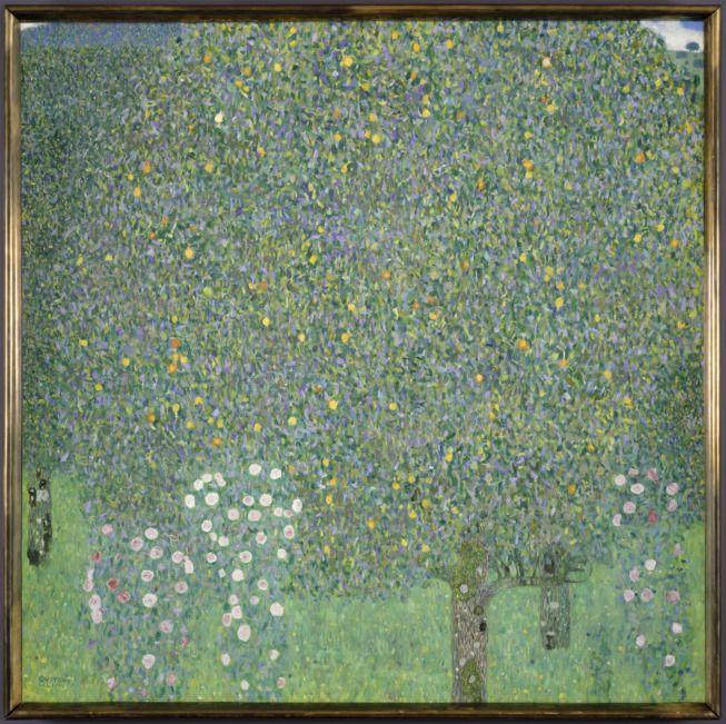 Gustav Klimt, Rosiers sous les arbres, vers 1905, huile sur toile, 110 x 110 cm© RMN-Grand Palais (Musée d'Orsay) / Patrice Schmidt