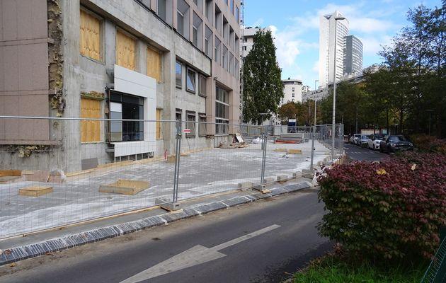 12 marronniers abattus rue de Strasbourg : l'allée venait d'être rénovée
